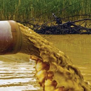 el impacto ambiental de las coladas