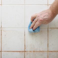 Limpiar sin productos químicos. Eliminar moho