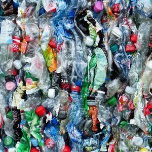 contaminacion por plasticos